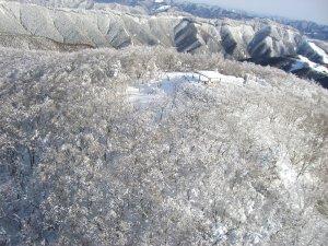 護摩壇山 山頂