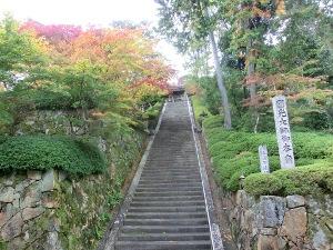 seizan2014.11.8-2.JPG