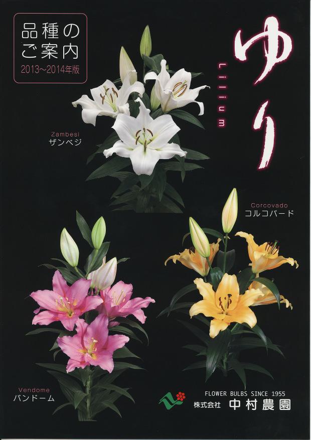 yuri2013.6.5-2.jpg